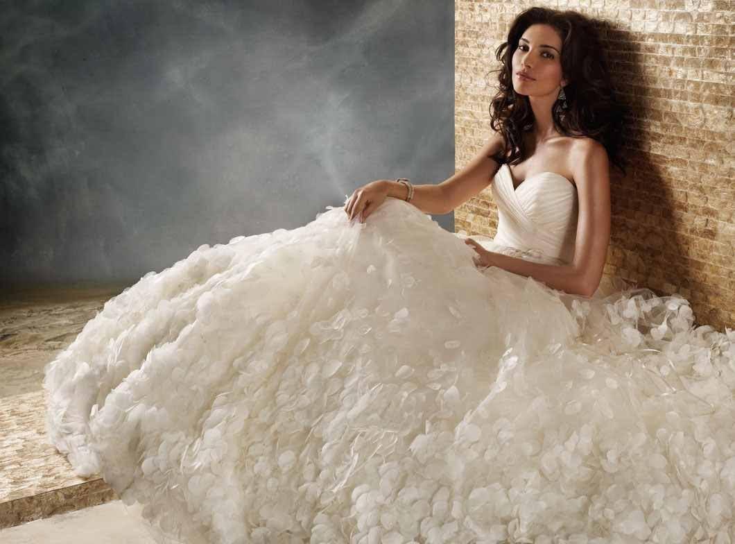 صوره صور فساتين اعراس ناعمة , فستان ليلة العمر