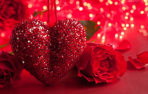 بالصور صور قلوب جديده , صور لعيد الحب جميله 399 3