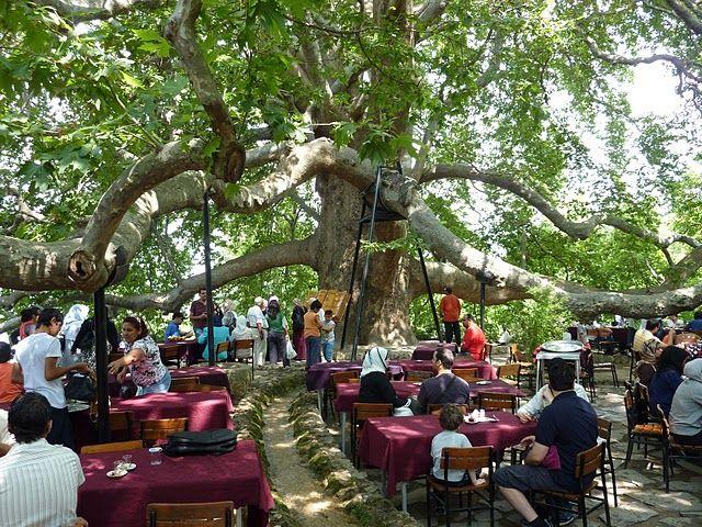 بالصور صور سياحة تركيا , من احلي البلاد سياحية 453 3