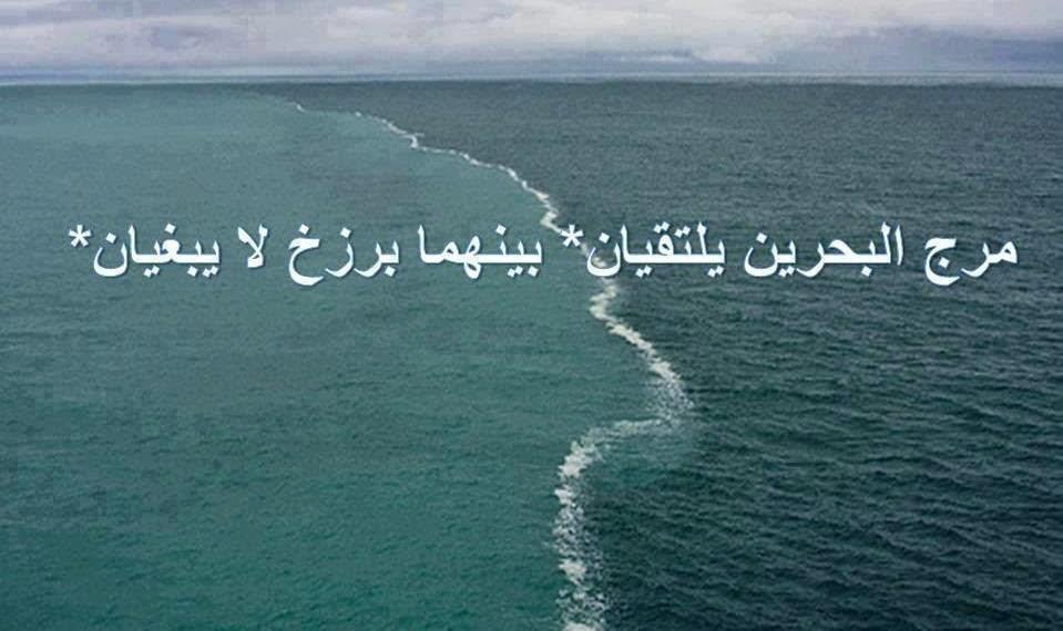 بالصور صور تدل على عظمة الخالق , الله سبحانه وتعالي وفضله علينا 461 2