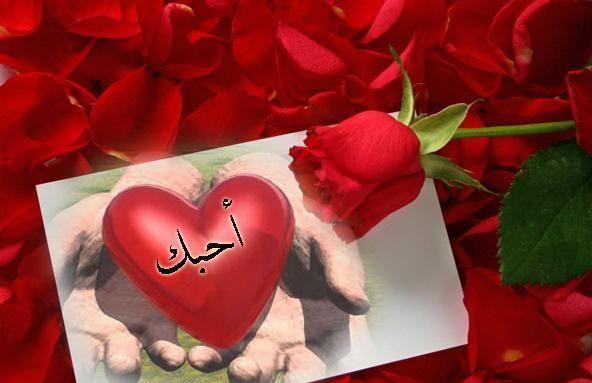 بالصور كلمات حب قصيره , قصائد شعرية جميلة 475 4