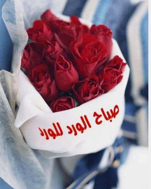 صورة صباح الورد حبيبي , عبارات لبداية اليوم للحبيب