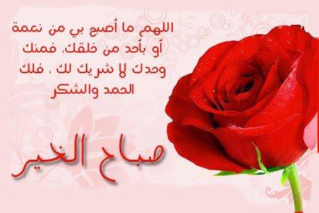 بالصور صباح الورد حبيبي , عبارات لبداية اليوم للحبيب 2430 2