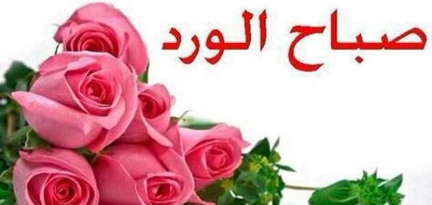 بالصور صباح الورد حبيبي , عبارات لبداية اليوم للحبيب 2430 6