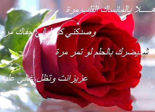 بالصور صباح الورد حبيبي , عبارات لبداية اليوم للحبيب 2430 8