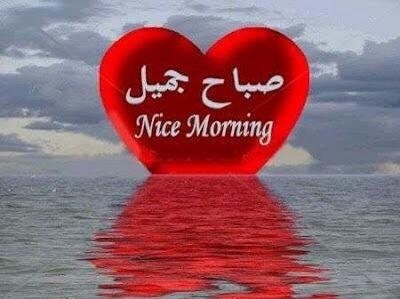 بالصور احلى صباح لحبيبي , صباح الخير علي حبي بالصور 2483 5