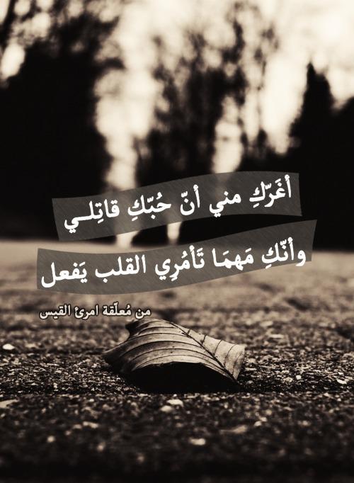 بالصور امرؤ القيس غزل , نبذه عن حياة الشاعر امرؤ القيس 2571