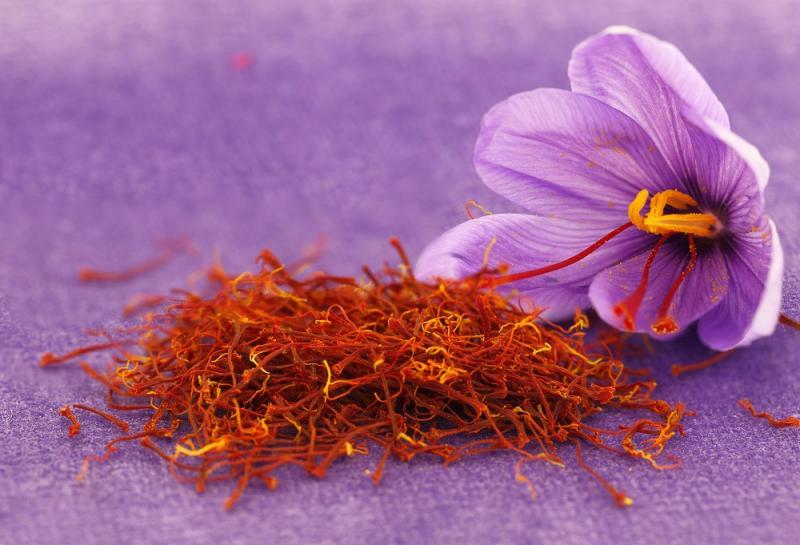 صوره فوائد الزعفران , سر تغيير لونه من البنفسجي الي اللون البرتقالي