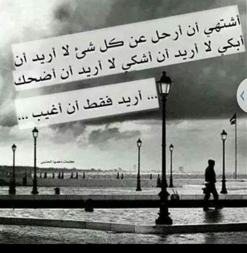 بالصور خواطر عن الرحيل , خواطر الفراق والرحيل 1388 9