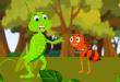 صور النملة والصرصور , قصة جميلة للنملة والصرصور