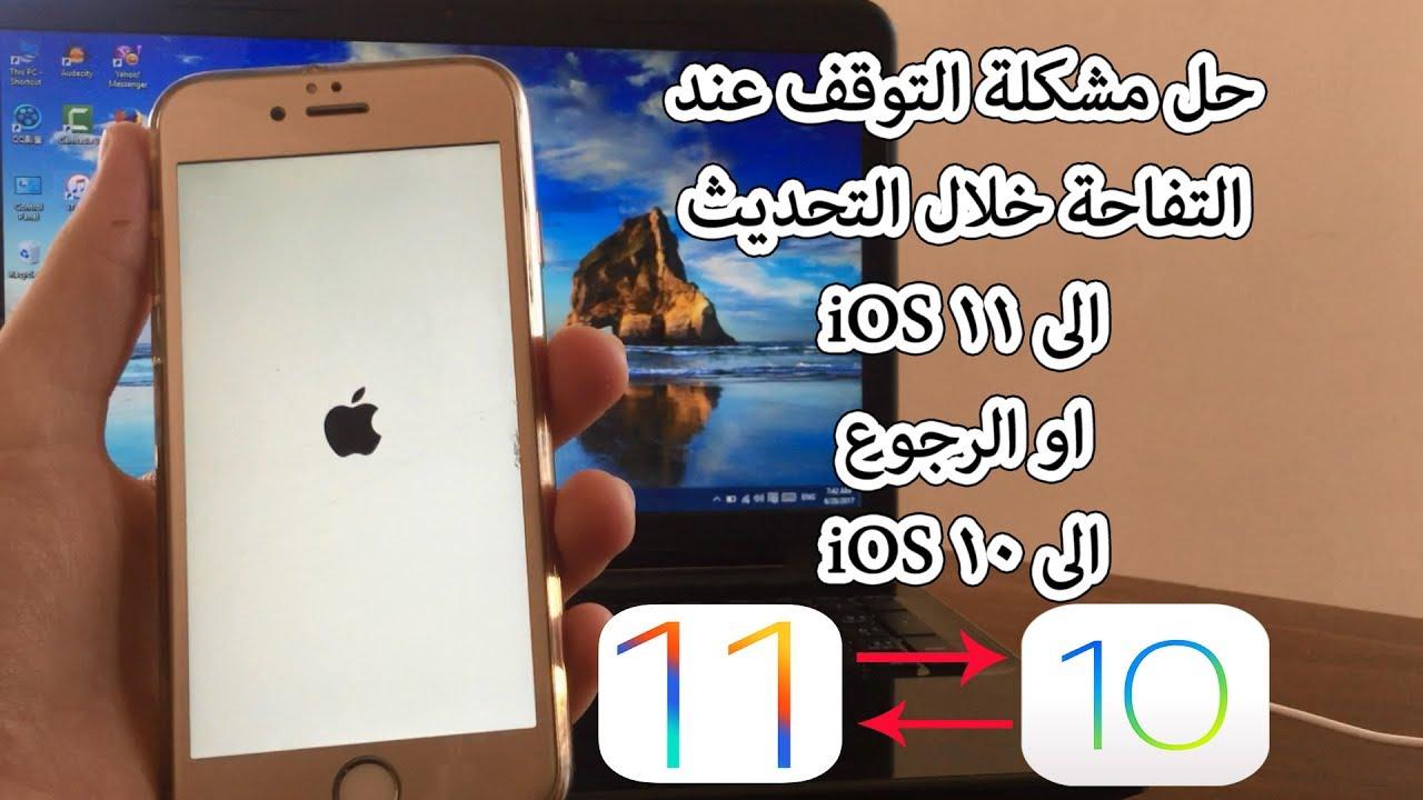 بالصور الايفون معلق على التفاحة , تفاحة الايفون 2269 2