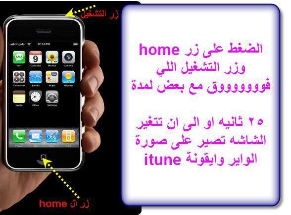 بالصور الايفون معلق على التفاحة , تفاحة الايفون 2269 4
