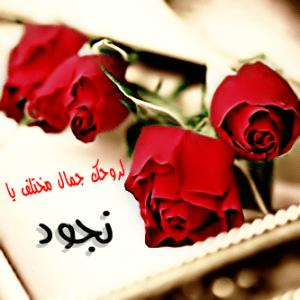 صوره اسماء خليجية , احلي الالقاب العربية المميزة