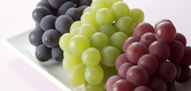 بالصور معلومات عن العنب , فوائد واستخدام الفواكه 2392 1
