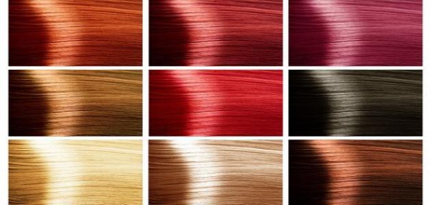 بالصور الوان صبغة الشعر لوريات الجزائرية , احلي درجات لتلوين شعرك 3545 2