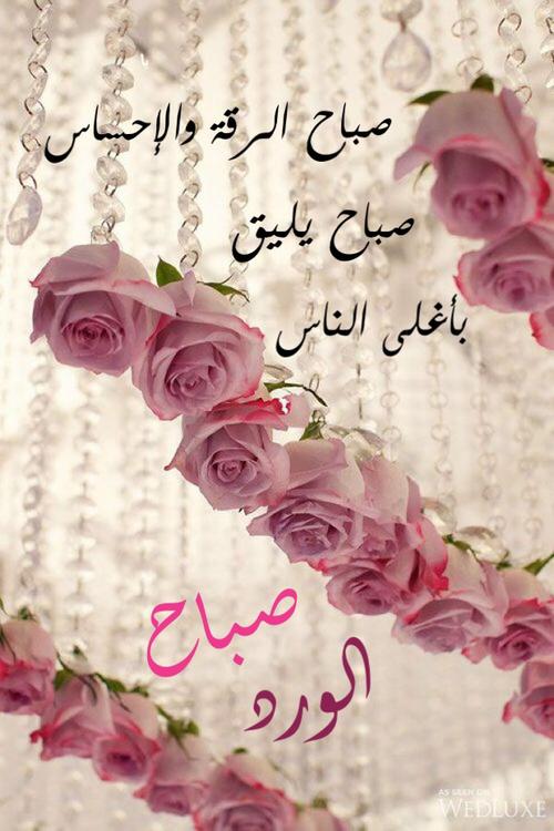 بالصور صور صباح الخير مع الدعاء صور دينيه لصباح اجمل البطاقات صباح الخير , صباحكم ورد 3669 5