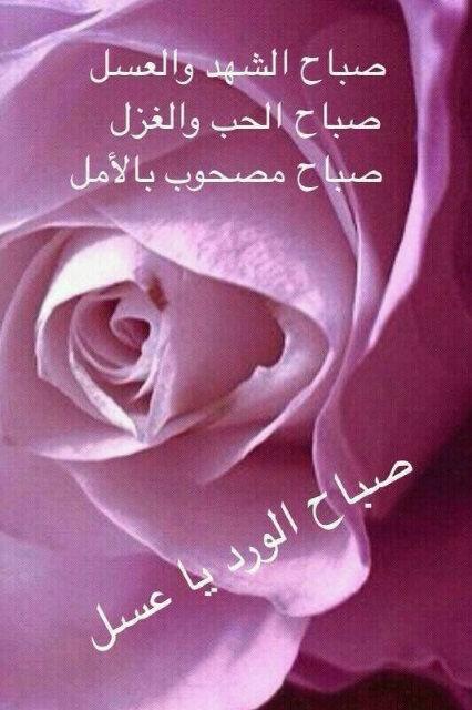 بالصور صور صباح الخير مع الدعاء صور دينيه لصباح اجمل البطاقات صباح الخير , صباحكم ورد 3669 8