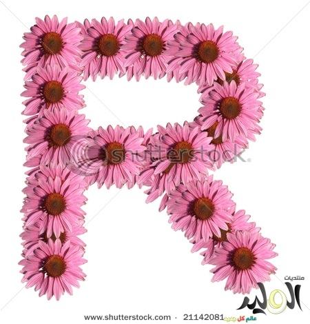 بالصور صور اجمل صور حروف انجليزية , صور حروف انجليزيه جديدة للتزين صور مزخرفه لحروف الاسماء 3822 4