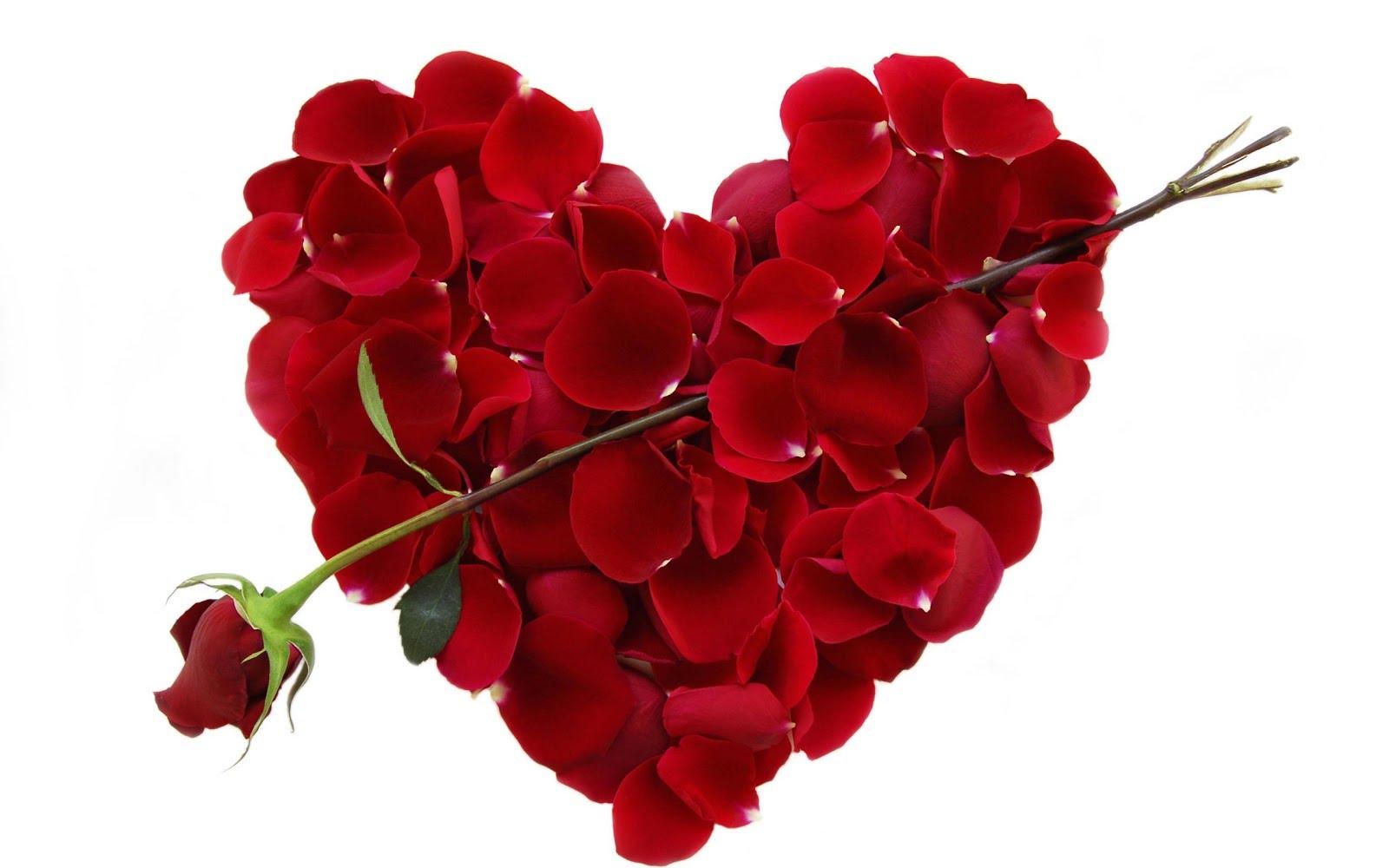 بالصور صور تصاميم عيد الحب صور ورود عيد الحب معايدات عيد الحب , بوستات ليوم العشاق 3877 6
