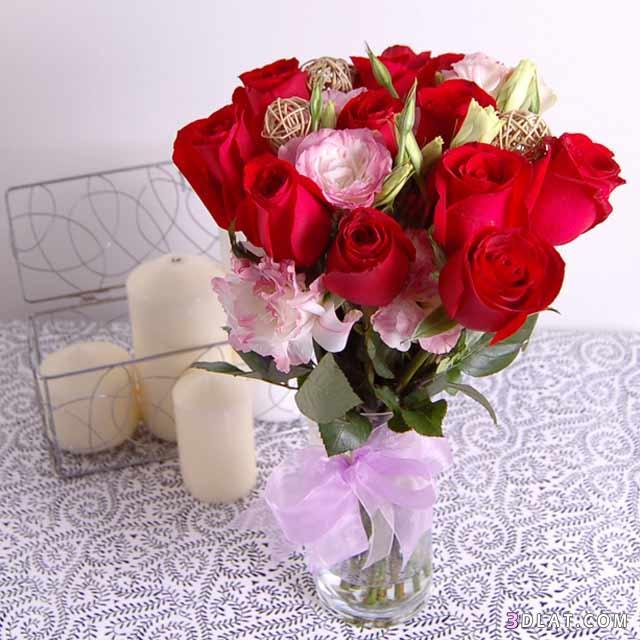 بالصور صور احدث صور ورود طبيعية صور ورد طبيعى باقات ورد احمر , زهور طبيعية 4163 4