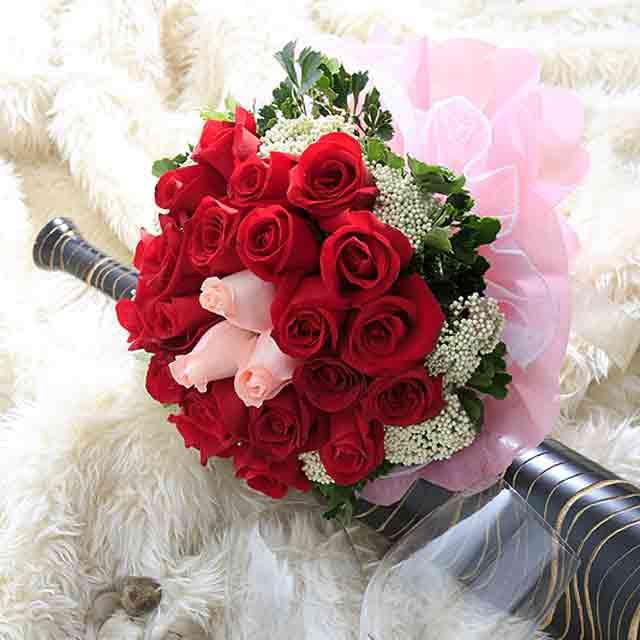 نتيجة بحث الصور عن صور ورد احمر اجمل صور الورد الاحمر ورود حلوة , خلفيات زهور ملونه