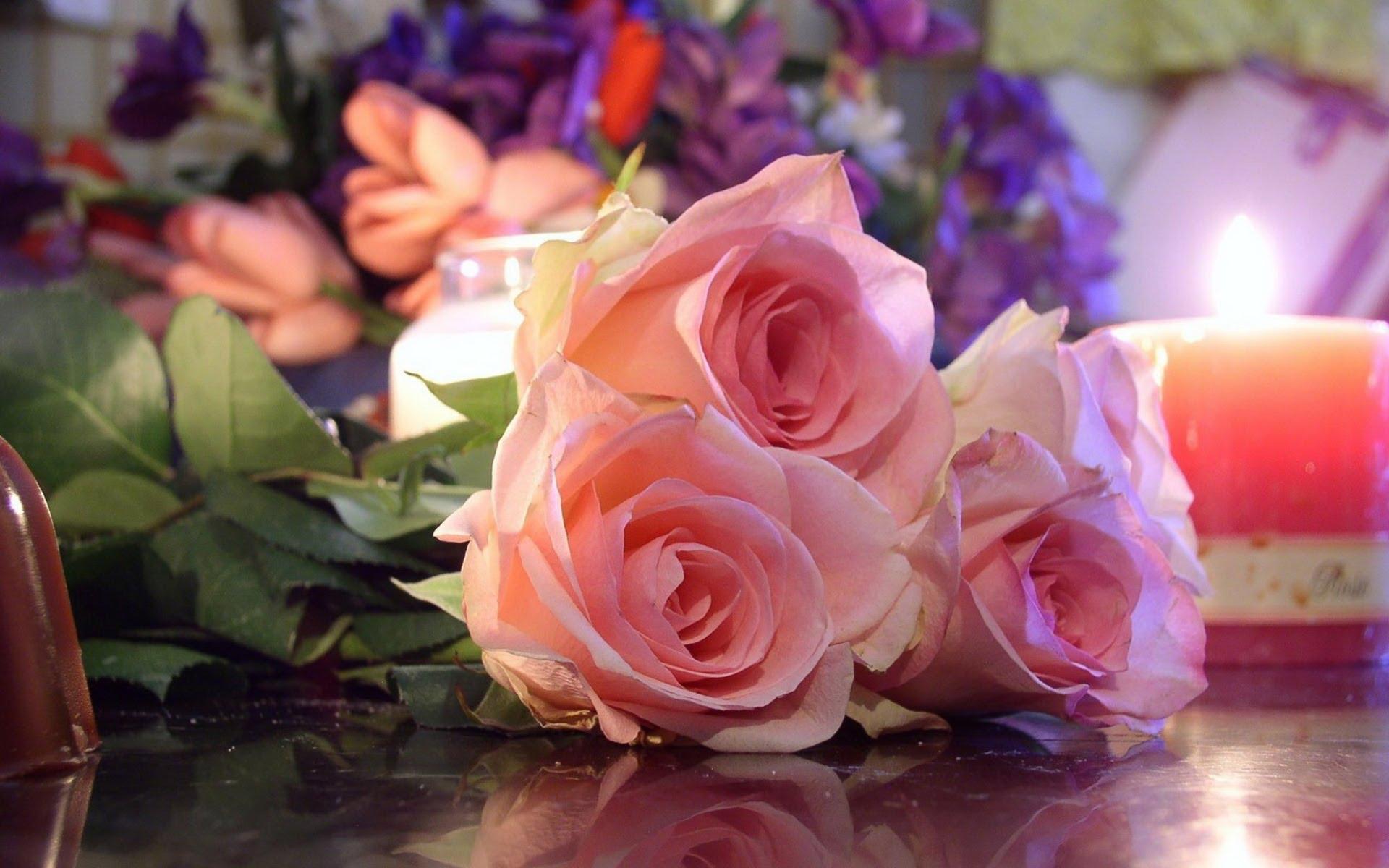 بالصور صور احدث صور ورود طبيعية صور ورد طبيعى باقات ورد احمر , زهور طبيعية 4163 6