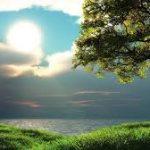 صور مناظر طبيعيه خلابة , صور جميله ومميزة