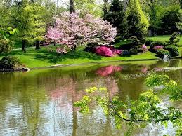 بالصور صور جميلة لعام صور طبيعة , صور روعه للطبيعه الخلابه 4257 1