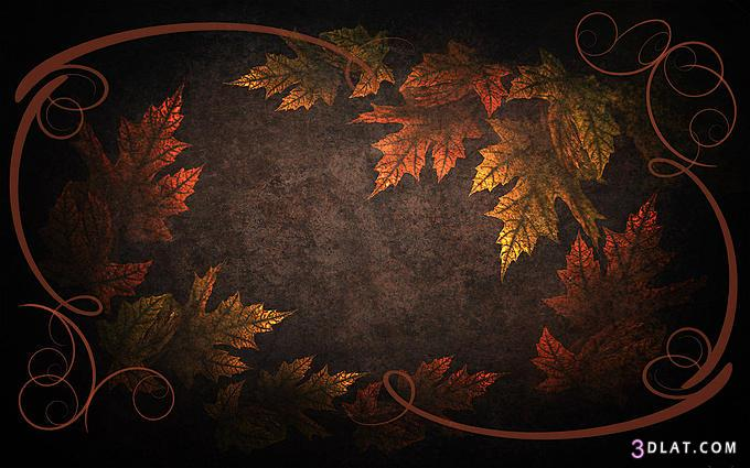 صوره صور خلفيات بوربوينت نجوم صور بوربوينت نجوم , خلفيات مميزة جدا