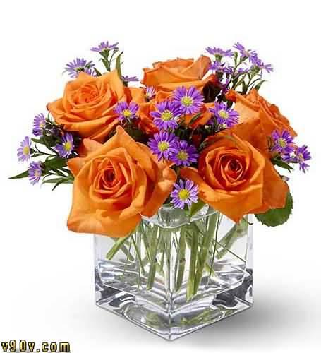 بالصور صور زهور اجمل صور الزهور صور زهور تهبل , اجمل ورود ملونه 4279 12