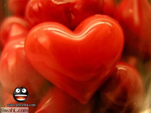 بالصور صور قلوب صور ورود متحركة صور ورود عيد الحب , صور رومانسيه جدا 4283 7