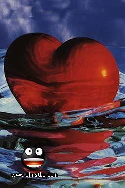 صوره صور قلوب صور ورود متحركة صور ورود عيد الحب , صور رومانسيه جدا
