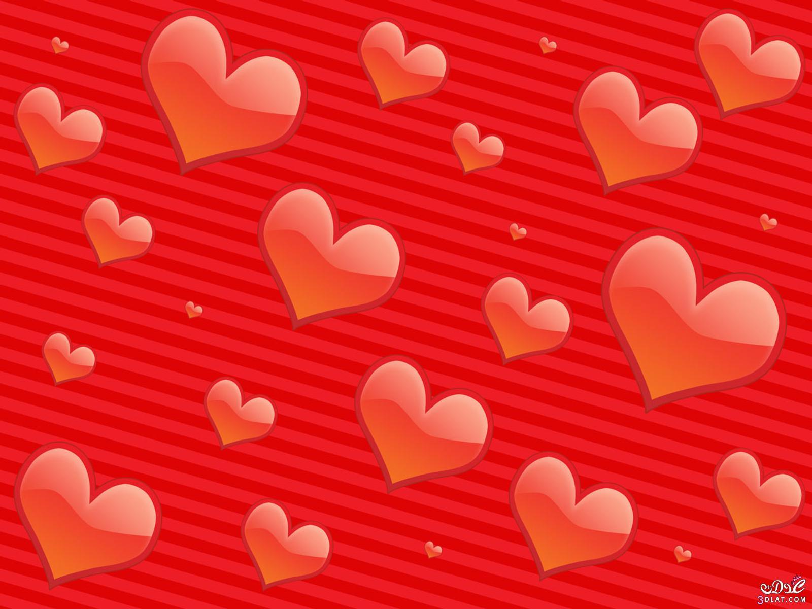 بالصور صور ورود على شكل قلوب بمناسبة عيد الحب صور ورد على شكل قلب لعيد الحب 4305 2
