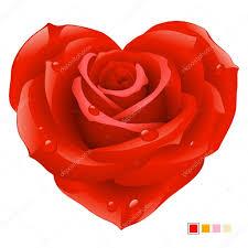 بالصور صور ورود على شكل قلوب بمناسبة عيد الحب صور ورد على شكل قلب لعيد الحب 4305 5