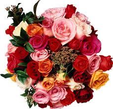 بالصور صور ورود على شكل قلوب بمناسبة عيد الحب صور ورد على شكل قلب لعيد الحب 4305 6