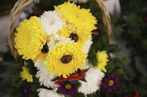 بالصور صور اشكال ورد اجمل بوكيه ورد بوكية ورد على شكل قطة و كلب رائع , وردات حلوة 4380
