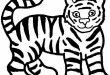 صور صور حيوانات للتلوين للاطفال رسومات تلوين للاطفال , رسومات للتلوين