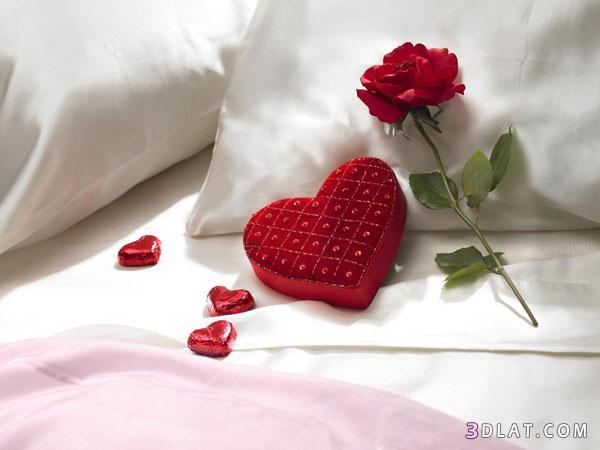 بالصور صور رومانسية للمتزوجين احلا الصور للمتزوجين صور روعة 4465 5