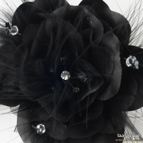 بالصور صور ورد اسود اجمل صور ورود سوداء متحركة صور زهور و ورد باللون الاسود