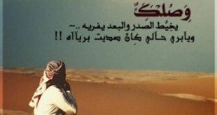 اشعار بدوية اشعار بدو , حكم ووامثال بدويه