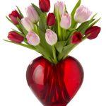 صور ازهار الحب خلفيات زهور حب حمراء زهور رومنسية ملونة , عن العشق وازهاره