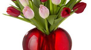 صوره صور ازهار الحب خلفيات زهور حب حمراء زهور رومنسية ملونة , عن العشق وازهاره