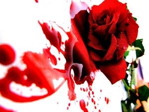 صوره صور للتصاميم صور قلوب تنزف صور دم وقلوب مجروحه للتصاميم