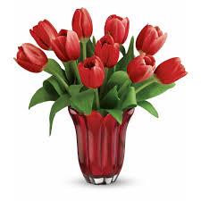 بالصور صور خلفيات ورود جميلة جدا عالية الدقة , صوره رائعه عن الزهور unnamed file 2183