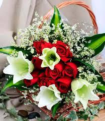 بالصور صور خلفيات ورود جميلة جدا عالية الدقة , صوره رائعه عن الزهور unnamed file 2185