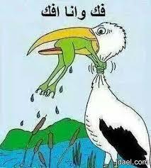 بالصور صور مضحكة جدا صور اخر مزاج , عن الضحك والفرفشه unnamed file 2553
