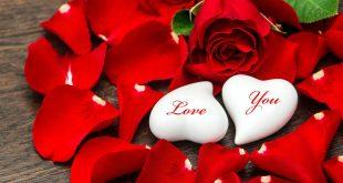 صور اجمل صور حب جديدة احلى صور حب وعشق , عالم الحب والجنون