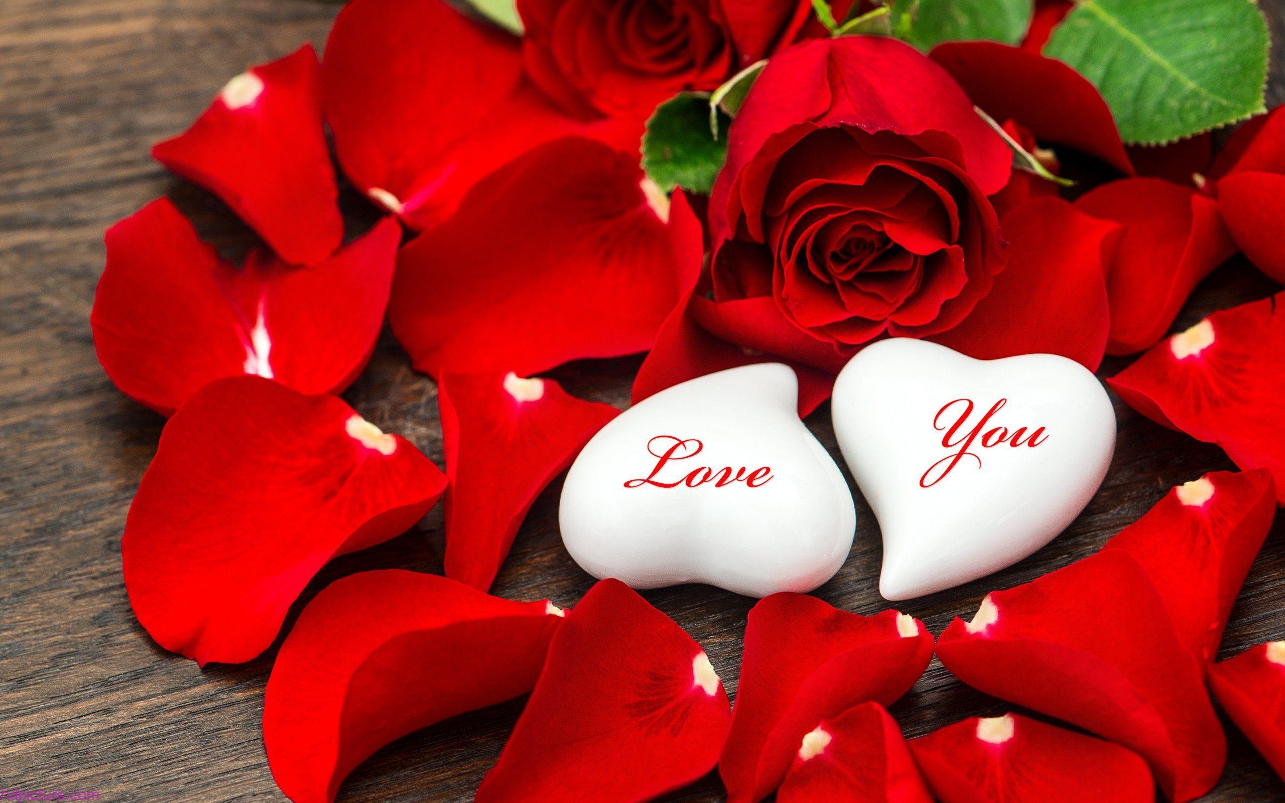 صورة صور اجمل صور حب جديدة احلى صور حب وعشق , عالم الحب والجنون