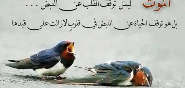 بالصور عبارات حزينة موت , اصبع كلمه عن الحزن unnamed file 263