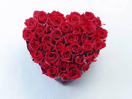 بالصور صور رومانسية باللون الاحمر اجمل صور بنات رومانسية صور ورود حمراء رومانسية , خلفيات قلوب للعشاق unnamed file 3061